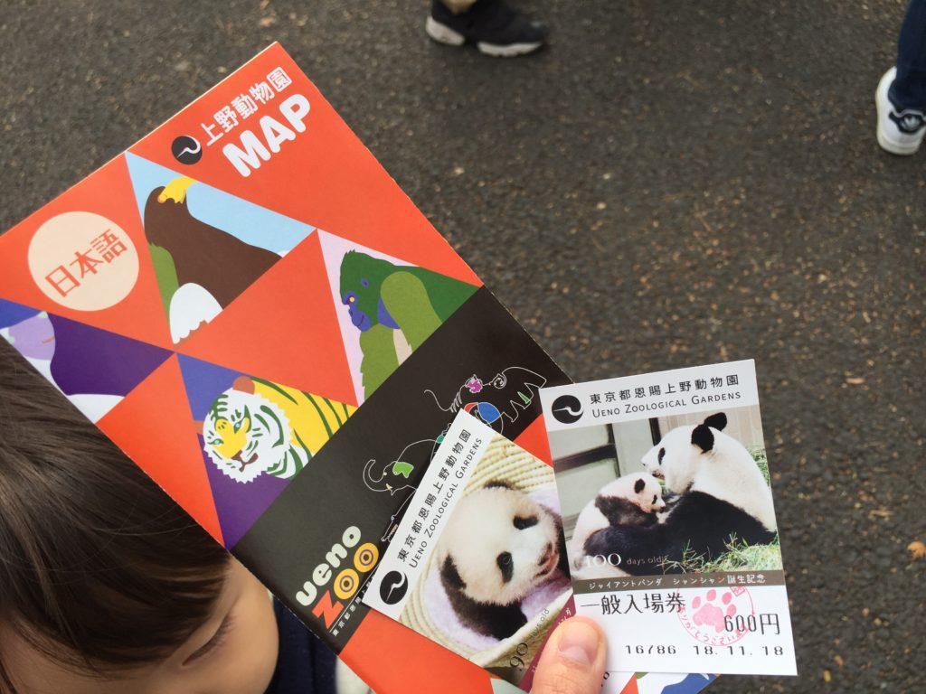 上野動物園のチケット