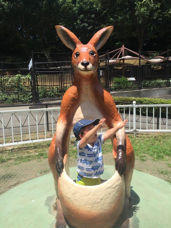 多摩動物公園のフォトスポット