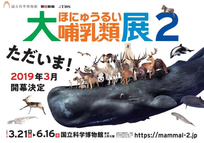 大哺乳類展2―みんなの生き残り作戦