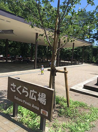 多摩動物公園のお弁当を食べれるところ